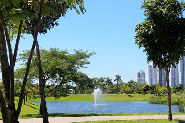 Proyectos de lujo en Panama